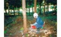1 自然環境の保全  ~ふるさとの自然の保全を応援する~