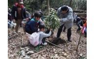 7.豊かな森林を育む事業