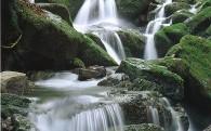 4.自然環境の保全に関する事業