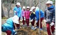 5.「緑のふるさと」地球温暖化対策応援
