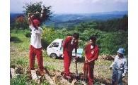 (3)住民自治の醸成及びコミュニティの推進に関する事業