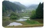 7.ふるさと景観保全のための事業