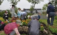 (3)みんなで実践する「市民協働」の推進プロジェクト