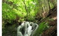 Ⅰ 水源地域の 森づくり事業