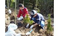 森林の保全及び整備に関する事業