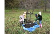 森林、水資源等に関する事業