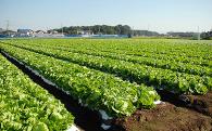 4 農業振興と商工業の育成に関する事業