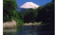 1 柿田川の保護・保全に関する事業