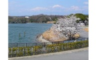 4  東郷町の豊かな自然を守るために【自然・環境】