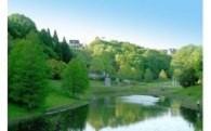 17 緑化推進・緑地保全・海辺の環境整備(緑と水辺の基金)