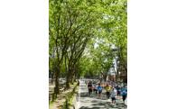 仙台国際ハーフマラソン大会応援