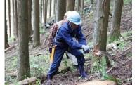17 道志水源林の保全に協力したい!(横浜市水のふるさと道志の森基金)