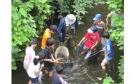 15 環境保全のための活動に協力したい!(横浜市環境保全基金)