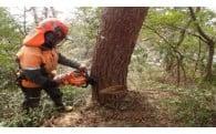 ④自然環境の保全や再生に関する事業