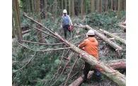 と 福岡の森づくり