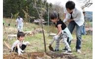 (2)恵まれた自然景観・環境を守るための植樹等の事業