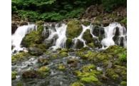 京極町の水資源等環境保全事業に活用します