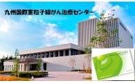 12)【施策】重粒子線がん治療の推進
