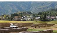 ③ふるさとの自然を活かした農林水産業振興事業