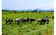 農林水産業の振興に関する事業