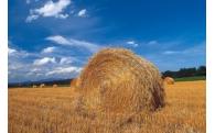 農業の振興