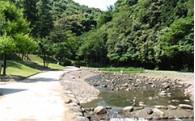 ⑤自然環境の保護や景観づくりに関する事業