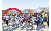 (2)健康・福祉・スポーツのまちづくりを応援する事業