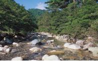 3.豊かな自然環境の保全   (環境保全・衛生)