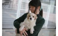 特5.犬猫の命を繋ぐプロジェクト(不幸な犬猫を増やさない取り組みを進めます)