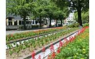 花と緑あふれるまちづくりに関する事業