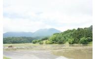 今川流域の緑化保全推進事業