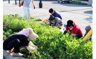 (8)町民によるまちづくり活動の推進に関する事業