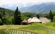 豊かな村づくりに関する事業