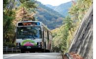 11.さくらやまなみバスを継続的に運行するための事業(バス事業基金)