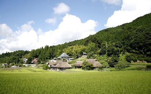 八塔寺ふるさと村の活性化