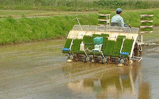 農林・商工・観光等地場産業の振興