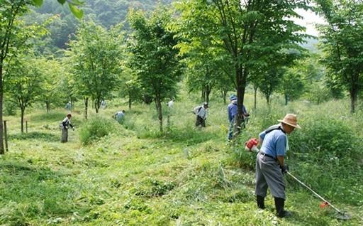 ①自然景観、自然環境を守り後世に引き継ぐ事業