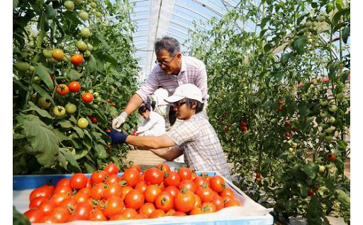 【農業を支える人材育成応援】農業を志す若者たちを応援!【お礼の品:福井県ふるさとパスポート(県外の方のみ)】