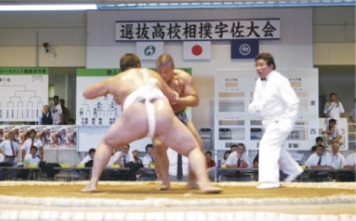 7.相撲関連事業