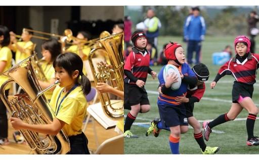文化芸術又はスポーツの振興