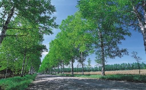 景観や環境対策