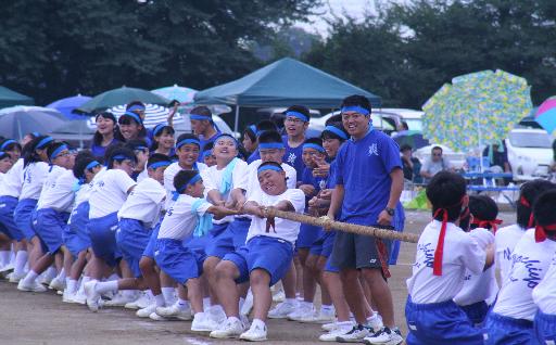 教育に関すること(教育、生涯学習、文化、スポーツなど)