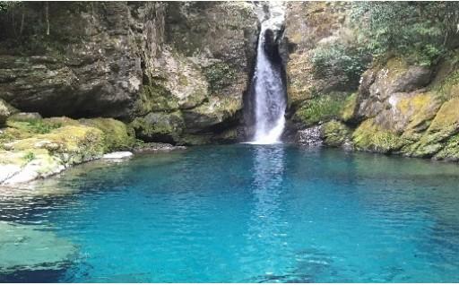 「水」「山」の環境を守り育てる事業