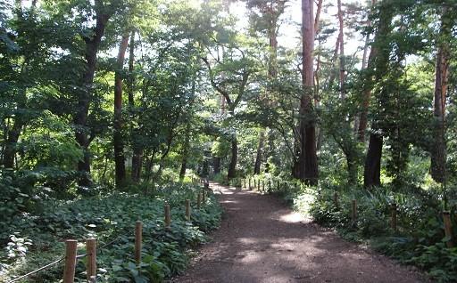 1. 緑地等の環境の保全及び創造に関する事業