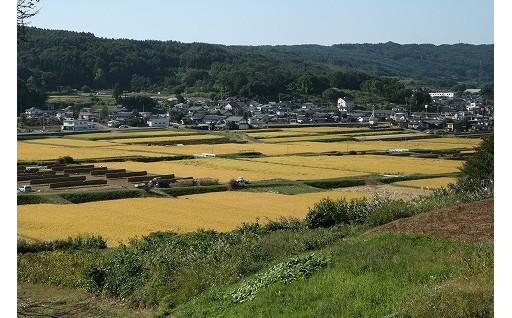 4 産業振興(農業振興・農産物ブランド化)に関する事業 (特産品でお米をご希望の方)