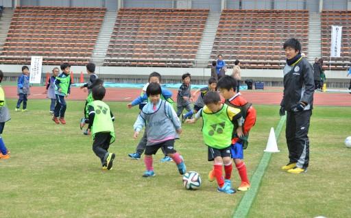 (8) スポーツ推進事業
