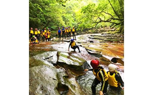 豊かな自然と文化を守り育てるための事業