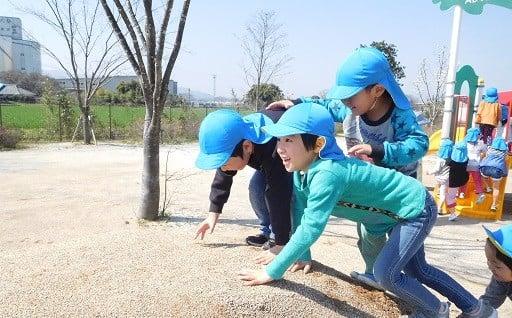 (2)未来を担う子どもの教育及び少子化対策事業
