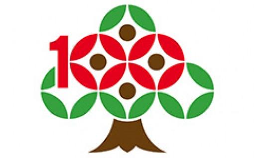(1) 町制施行100周年記念事業