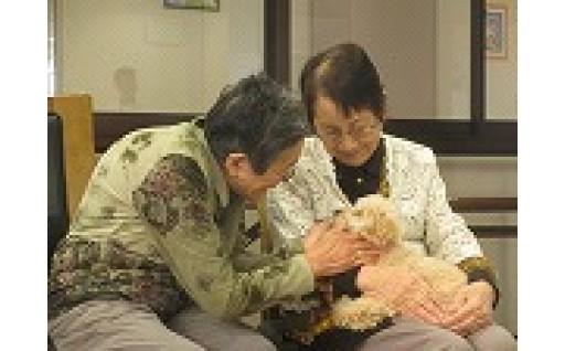 命を守る「災害救助犬」「セラピードッグ」の育成や犬・猫の殺処分ゼロを目指す事業